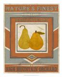 Vintage Produce Sign VII
