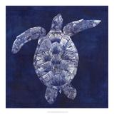 Sea Turtle Shadow II