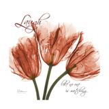 Laugh Tulips