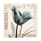 Tulip Hope