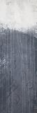 Lithosphere 78 - Canvas V