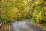 USA, North Carolina. Road Through Autumn-Colored Forest