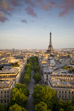 Evening Sunlight over the Eiffel Tower and Buildings of Paris, France