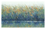 Wildflower Reflection II