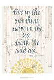 Sun Quote IV