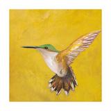 Sweet Hummingbird II