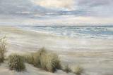 Seashore Serenity