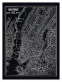 New York City, 1895