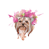 Dog Illustration. Yorkie. Isolated. Watercolor