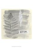 Garden Scrapbook I