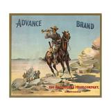 Advance Brand - California - Citrus Crate Label