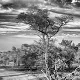 Awesome South Africa Collection Square - Natural African Landscape B&W