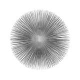 Silver Sunburst I