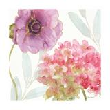 Rainbow Seeds Flowers V