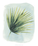 Paradise Palm Leaves II