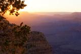 USA, Grand Canyon National Park, Evening Light