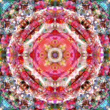 A Mandala Ornament from Flowers, Photograph, Many Layer Artwork