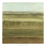 Abstract Meadow II