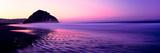 View of Beach at Sunrise, Morro Rock, Morro Bay, San Luis Obispo County, California, USA