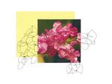 Floral Contour 4