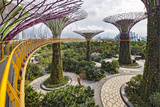 Supertree Grove and Skywalk in the Gardens by the Bay, Marina South, Singapore.