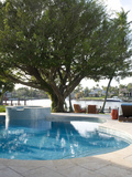 Swimming Pool with Tree and View to River