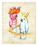 Fanciful Birds IV
