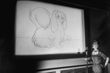 Walt Disney Voice Artists Working on Feature Cartoon, the Lady and the Tramp, Burbank, CA, 1953