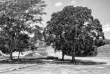 !Viva Mexico! B&W Collection - Maya Archaeological Site VI - Edzna