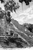 !Viva Mexico! B&W Collection - Pyramid of the ancient Mayan city of Calakmul VI