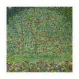 Apple Tree I, 1911 or 1912 Oil on canvas (109 x 110 cm) Estates of Ferdinand and Adele Bloch-Bauer. Giclée-Druck von Gustav Klimt
