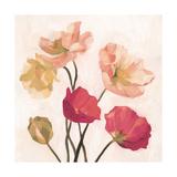 Summer Poppies I Premium Giclee Print by Emma Scarvey