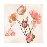 Summer Poppies III Premium Giclee Print by Emma Scarvey