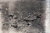 Bodies of dead French soldiers, c1914-c1918 Photographic Print by  Unknown