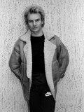 Musician Sting Premium-Fotodruck