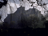 Edinburgh Castle Seen Through a Veil of Tree Branches Photographic Print by Dmitri Kessel