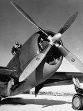 American P-47 Thunderbolt Fighter Plane and its Pilot Lámina fotográfica por Dmitri Kessel