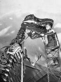 Man Working on Skeleton of a Tyrannosaurus at the American Museum of Natural History Fotoprint av Hansel Mieth