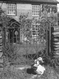 Jemima Puddle-Duck Posing in Front of Iron Gate Outside Beatrix Potter's Home Fotografisk tryk af George Rodger