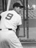 Ted Williams During Batting Practice Premium Photographic Print by Ralph Morse