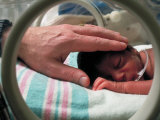 Adult Hand Touching Tiny Head of Baby, Born Addicted to Crack Cocaine, in Hospital Incubator Fotoprint van Ted Thai