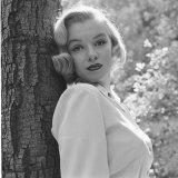 Marilyn Monroe Premium-Fotodruck von Ed Clark