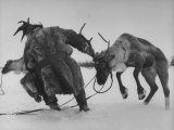 Lapp Struggling to Harness One of His Reindeer Photographic Print by Mark Kauffman