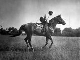 Race Horse Man O' War Photographic Print