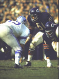 Football: Chicago Bears Dick Butkus No.51At Line of Scrimmage During Game Vs Detroit Lions Premium fotografisk trykk