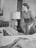 Model Loretta North with Small Kangaroos at the Australian Embassy Putting a Sick Kangaroo to Bed Lámina fotográfica