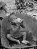 2 Year Old Drinking Coconut Lámina fotográfica
