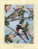 Schönheit der Natur I Kunstdrucke von Darryl Vlasak