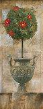 Grecian Bloom I Posters by  Augustine (Joseph Grassia)