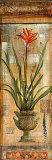 Rojo Botanical I Affiches par John Douglas